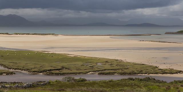 Plains of Ireland