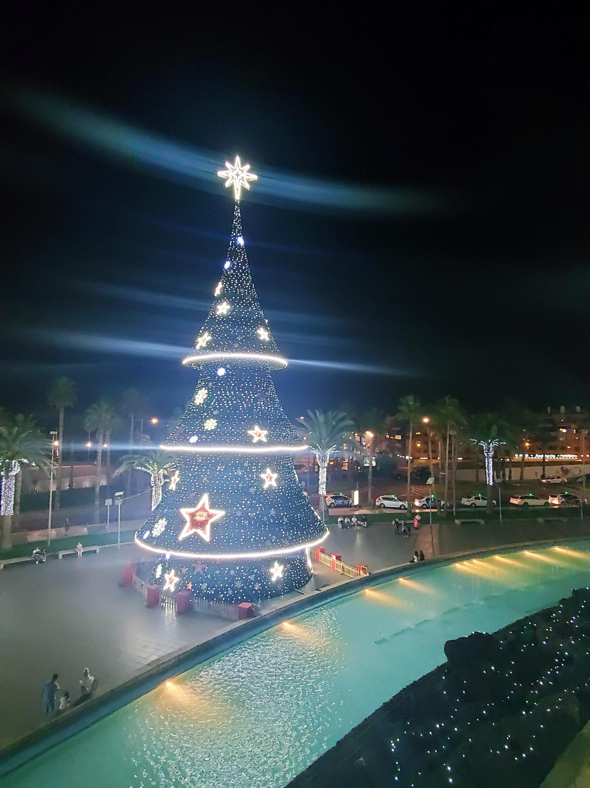 las palmas christmas