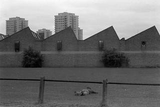 Waterden Rd, Hackney Wick, Hackney, 1982 32z-65_2400