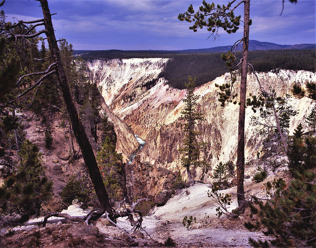 South Rim, Yellowstone Canyon
