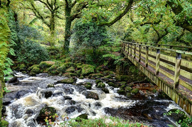 Footbridge over  the River Plym, Dartmoor