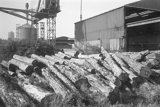Timber yard, Stratford, Newham, 1982 32v-22_2400
