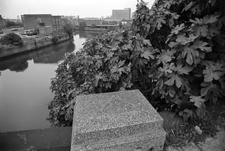 Waterworks River, Blaker Rd, Stratford, 1983 36m-52_2400