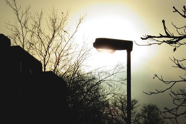 Sunlit Street Light