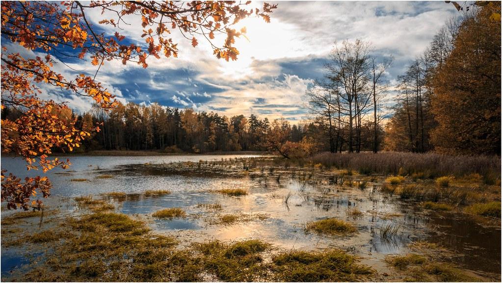 Landschaft am Wasser