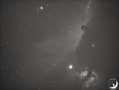 NGC 2023 / NGC 2024 Nebulosa Fiamma e Testa di Cavallo