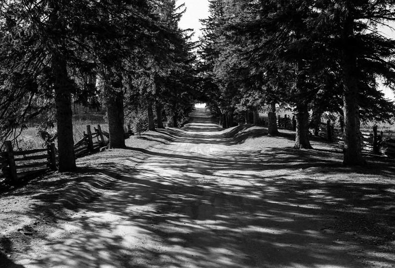 Scotsdale Farm Front Driveway