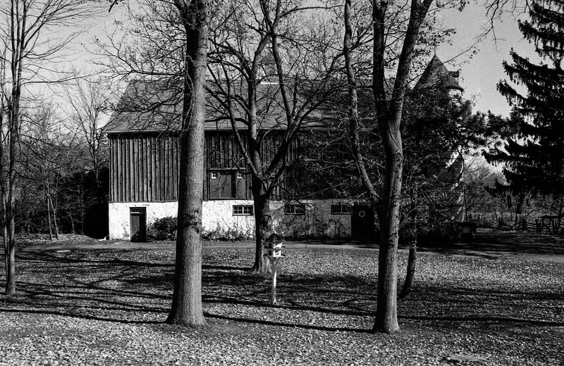 Barn Behind the Trees