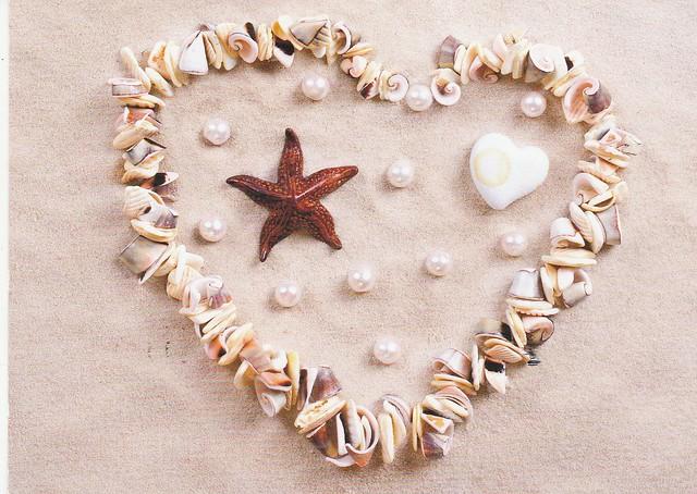 Coeur de coquillages - photo de colourbox