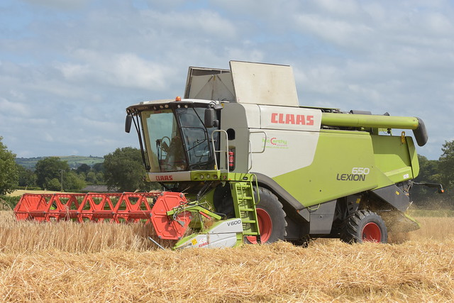 Claas Lexion 650 Combine Harvester cutting Winter Barley