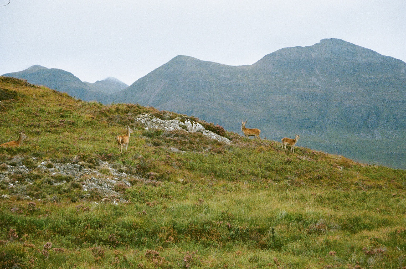 The Little Magpie Scotland Photo Diary North Coast 500 12