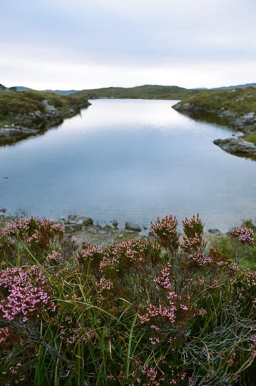 The Little Magpie Scotland Photo Diary North Coast 500 16