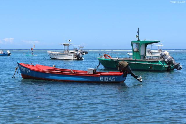 L'Etang-Salé : bateaux dans le bassin Pirogue