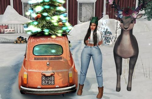 venha Dezembro ♥
