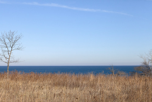FORT SHERIDAN GRASS AND SHORE