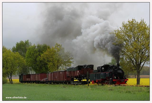 Pollo - 2010-12
