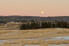 Moonrise in MD of Foothills