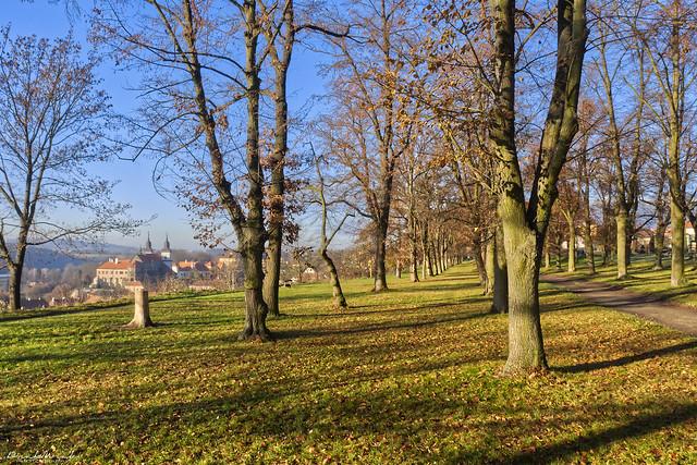 Sunny morning in Třebíč