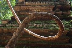 Chiang Mai, 28/11/2020