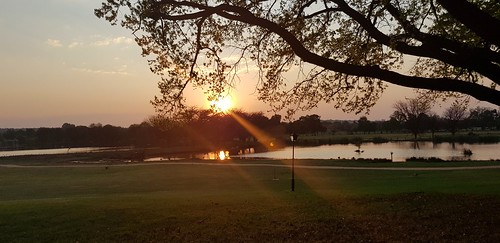 irenecountrylodge pretoria southafrica irene country lodge south africa sunset by lake sunsetbythelake sun sunlight sunsets water lakes dam dams tree trees nature outdoors
