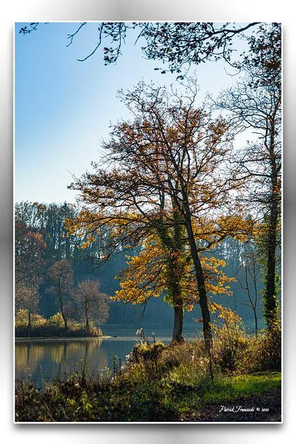 Lac de Marville 2