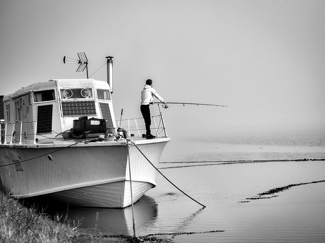 Early morning fishing in the fog!