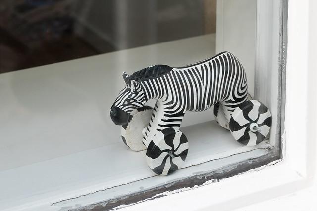 Zebra on Wheels, Seen in a window