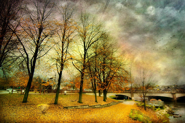 Autumn Promenade Along the River