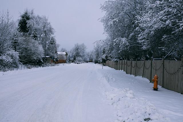 Snowy Dead End