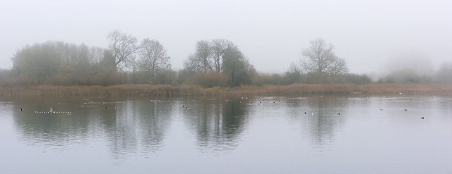 A grey, foggy afternoon at the reservoir ...