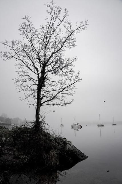 Autumn Grey On Lake Windermere
