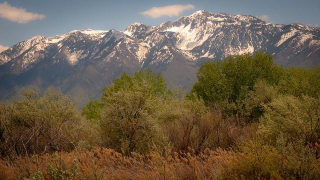 Wasatch Range from the Salt Lake Valley, Utah