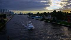 Golden Miami Panorama. American Lifestyle 2020 - Miami street photos