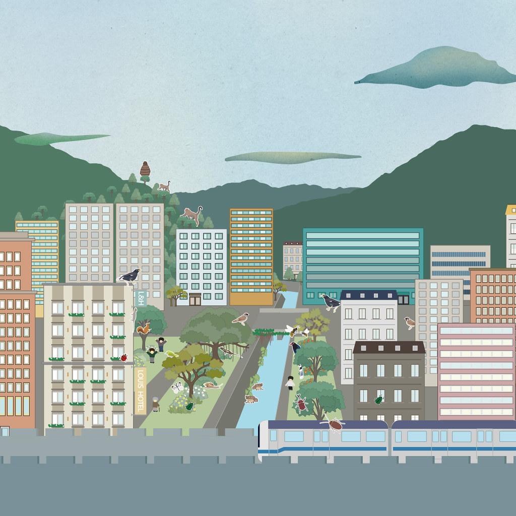 在繁忙的都市生活中,留心觀察,會發現有許多生物也正為了生活而努力著。