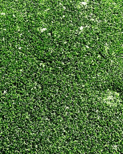 texture crazytuesday green ashpalt driveway textures