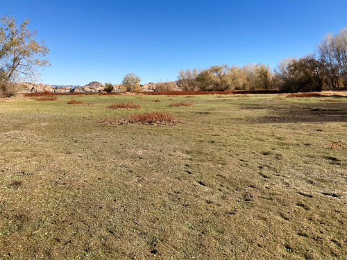 willow_lake_no_water_20201128_100
