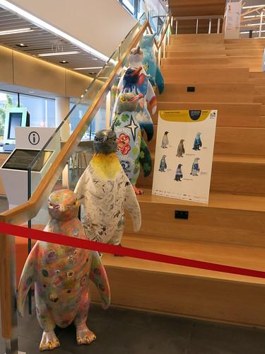 School Waddle - Pop Up Penguins