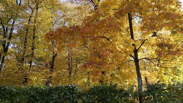 October Park Bialystok