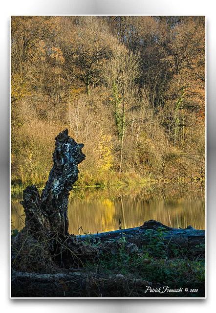 L'indien guetteur - Lac de Marville