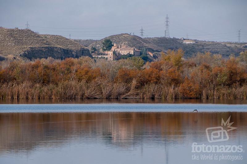 Lagunas de Velilla de San Antonio