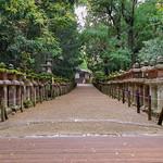 Kasuga-taisha II, Nara, 20191114