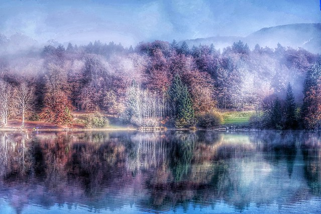 Autumn mist lake Bohinj
