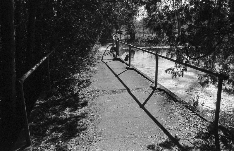 Path over the Dam_