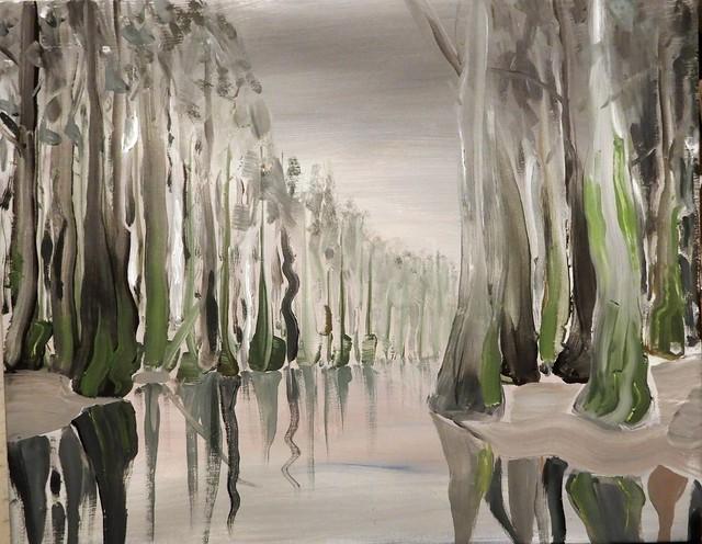 Cedar Creek, Congaree Swamp