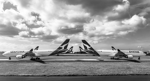 Qantas Planes Stored at Sydney Airport | by John A Henderson