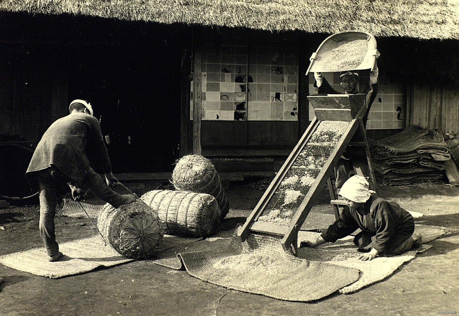 13. Просеивание и упаковка риса