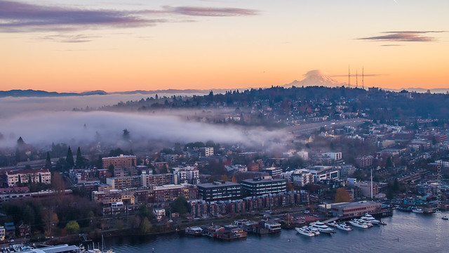 Fog Over Capitol Hill