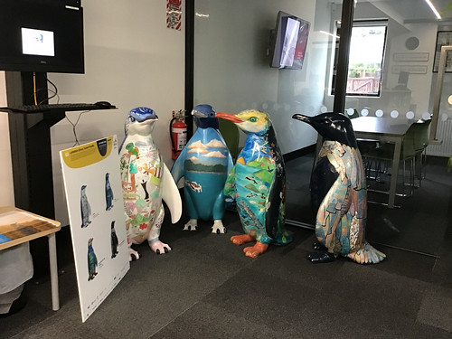 Pop up Penguins at Lyttelton Library