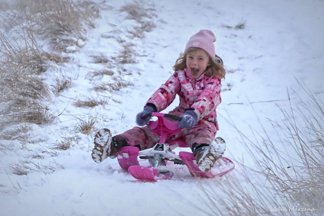 The pink sledge