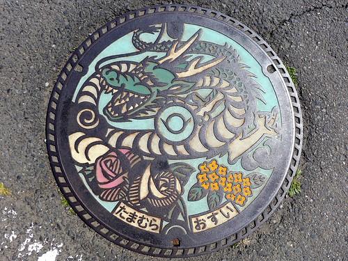 Tamamura Gunma, manhole cover (群馬県玉村町のマンホール)